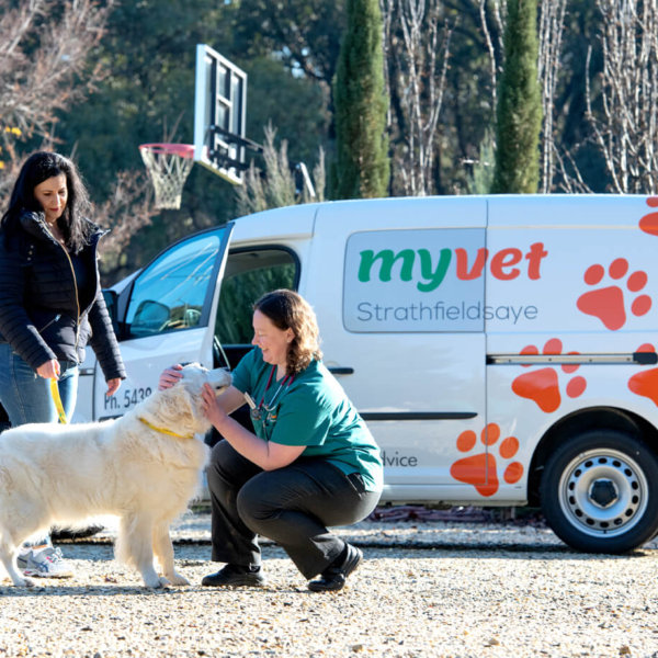 photo of dr susan bibby in front of myvet at home vet service van